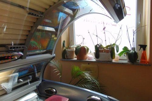 Studio16-Sonnenbank